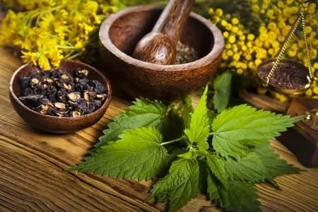 natural-health-careers2 - Natural Medicine