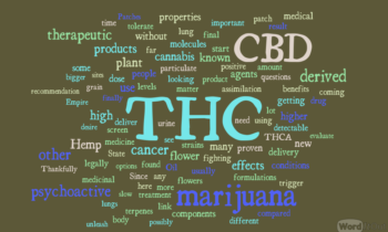 Medical Marijuana for Cancer Therapy: THC and CBD
